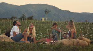 La ruta del vino serrano va del Valle de Calamuchita hasta Colonia Caroya.