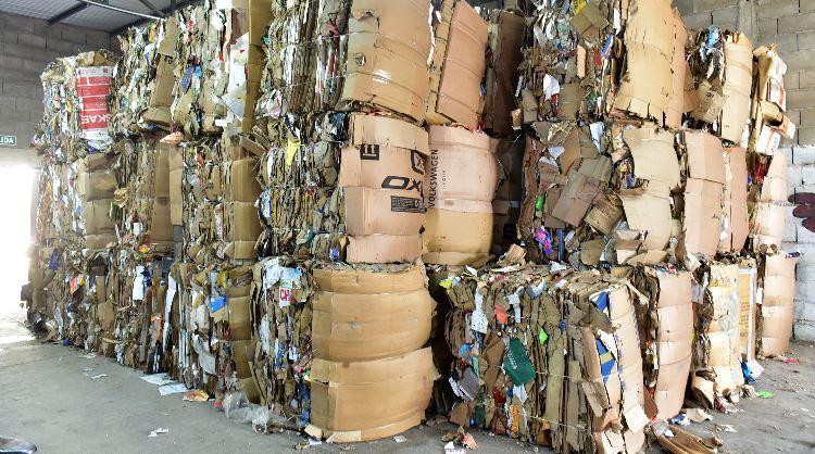 Luz verde para el reciclado cooperativo en San Francisco