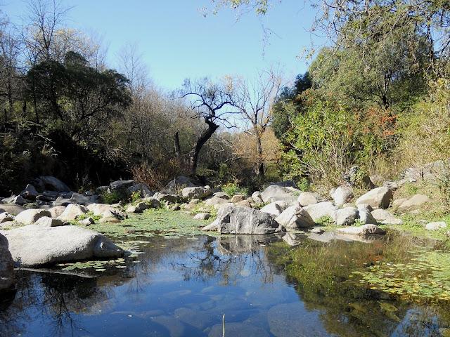 La reserva Los Quebrachitos en Unquillo es uno de los sitios que podrían verse afectados